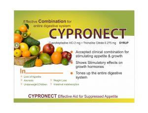 Visual Aid cypronect