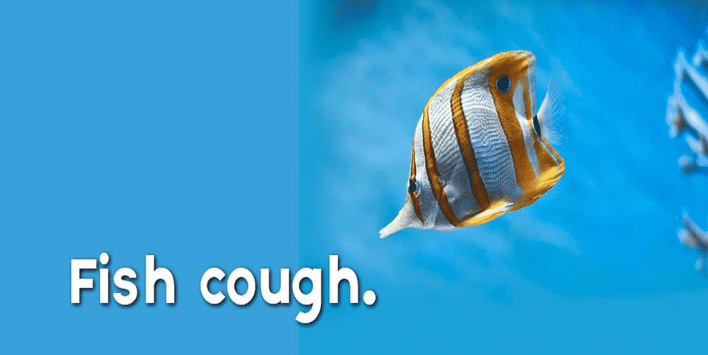 fish cough